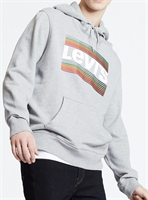 Picture of Levi's Hoody Graphic Grey